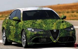 Konoplja u Alfa Romeo automobilima
